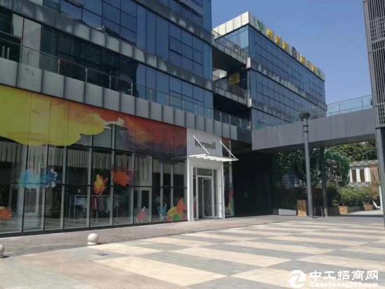 A龙岗爱联地铁站500米处精装50平--200平小户型写字楼图片2