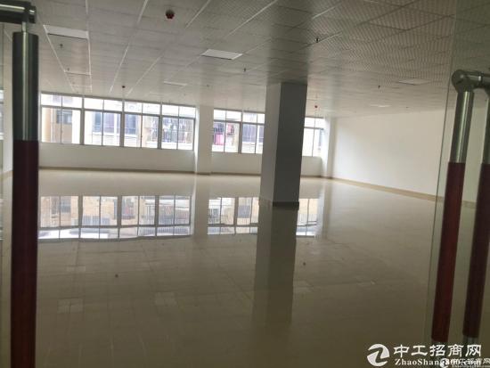 龙岗创意园138平方精装修写字楼出租!
