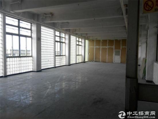 申江路外环边240平方办公室出租租金1.5元图片1