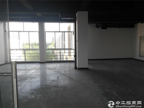 申江路外环边240平方办公室出租租金1.5元图片3