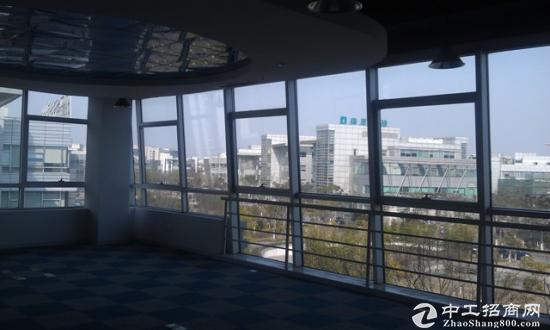 浦东张江独栋写字楼环境优美送阳台适合研发图片4