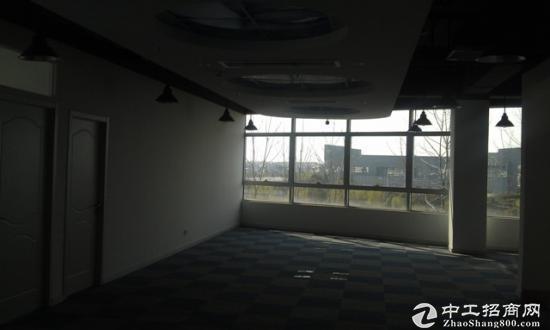 浦东张江独栋写字楼环境优美送阳台适合研发图片3