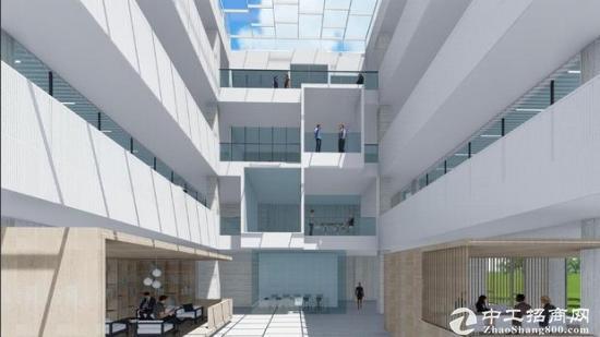 出租静海独栋国际商贸物流园大楼图片4