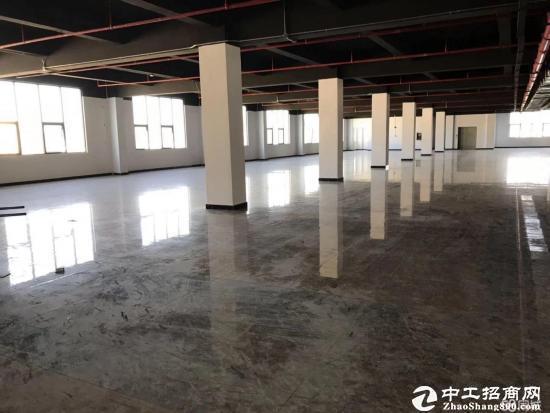 木棉湾新出红本写字楼1200平米35元平大小分租