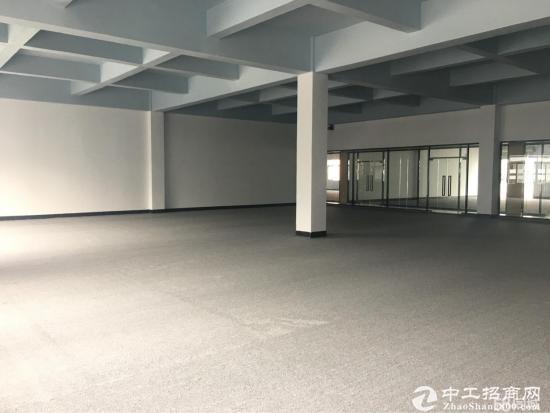 坂田电商产业园5000平带红本精装修大小可分租