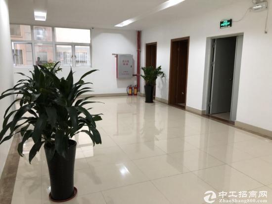 高新区产学研中心纯写字楼出租图片2