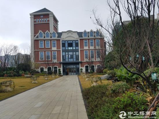 龙泉经开区高端独栋办公楼