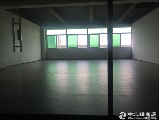 火炬开发区江陵西路精装写字楼出租图片3
