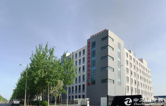 天津保税区独栋办公楼写字楼出租出售图片1