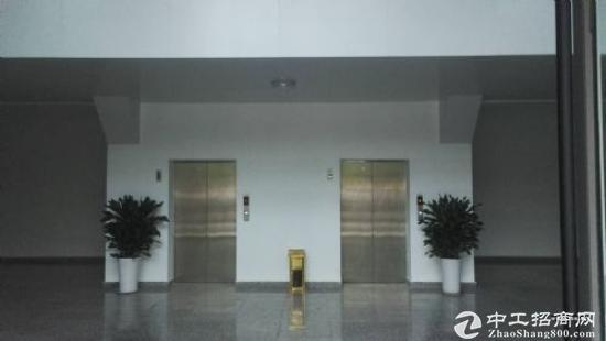 保税区自贸区写字楼,仓库图片3