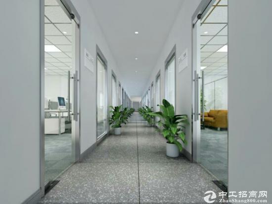 物业!中旭鑫95平朝南,双开门,精装首租图片2