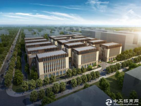 松江新桥全新2100平写字楼 研发独栋办公图片1