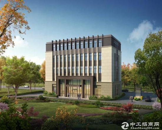 松江新桥全新2100平写字楼 研发独栋办公图片2
