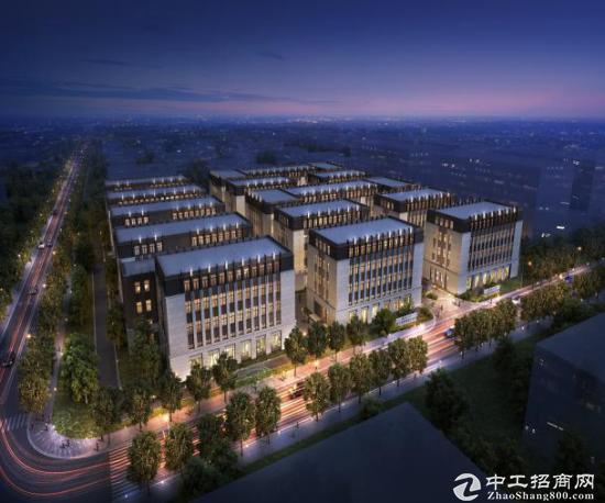 松江新桥全新2100平写字楼 研发独栋办公图片3