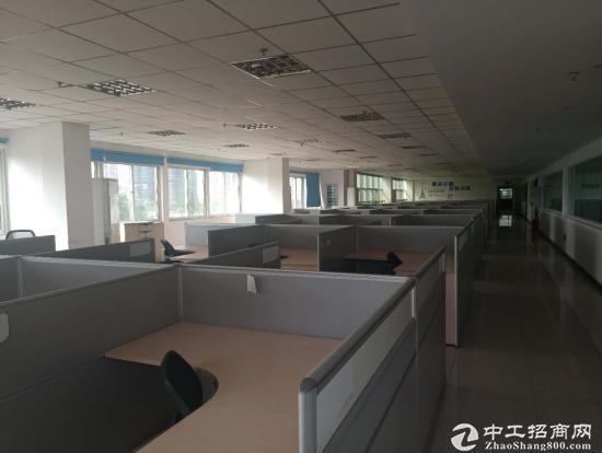 龙泉经开区2000平办公楼出租可分租图片2