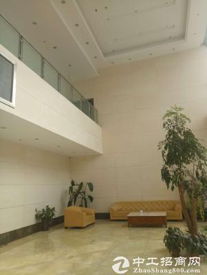 龙泉经开区2000平办公楼出租可分租图片5