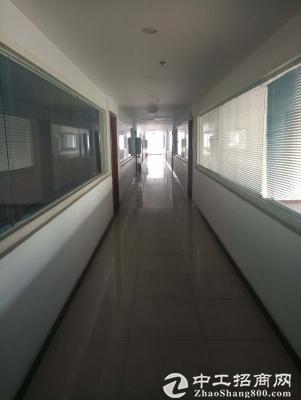 龙泉1800平办公楼出租可分租精装修图片3