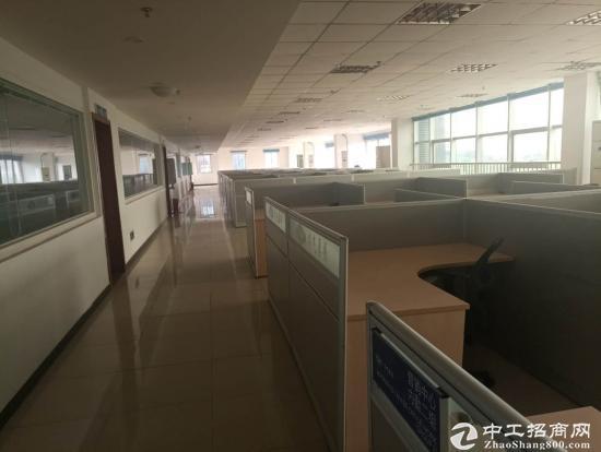龙泉1800平办公楼出租可分租精装修图片2