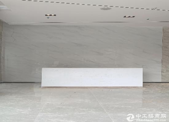 龙岗丹竹头地铁站新盘精装办公室60平起租图片2