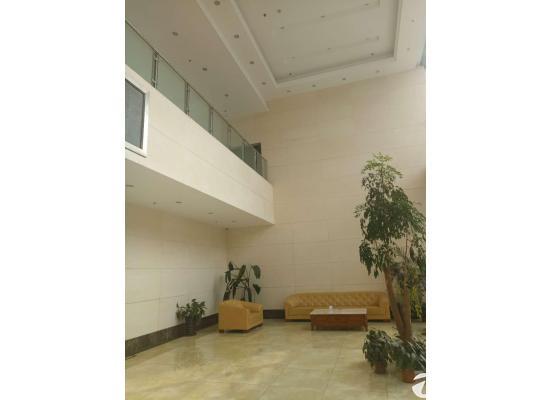 龙泉经开区精装修(带办公座椅、电器)办公楼出租价格便宜图片1