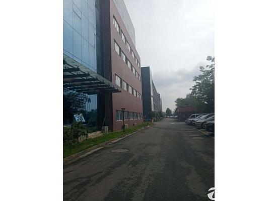 龙泉经开区精装修(带办公座椅、电器)办公楼出租价格便宜图片2
