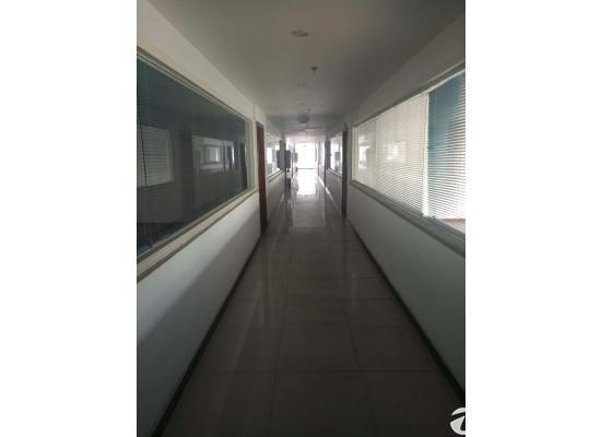 龙泉经开区精装修(带办公座椅、电器)办公楼出租价格便宜图片4