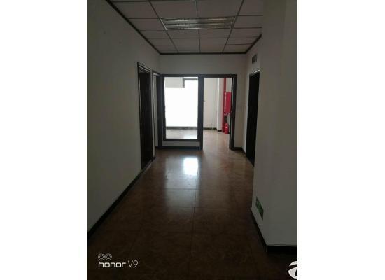 出租马驹桥西区办公楼有客梯单层面积230平米