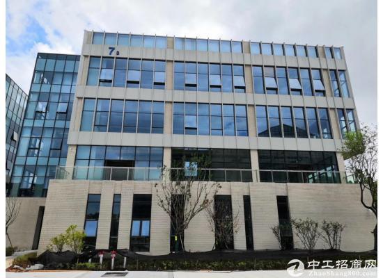 武汉经开永旺旁-临湖低密研发办公楼-园区有政策