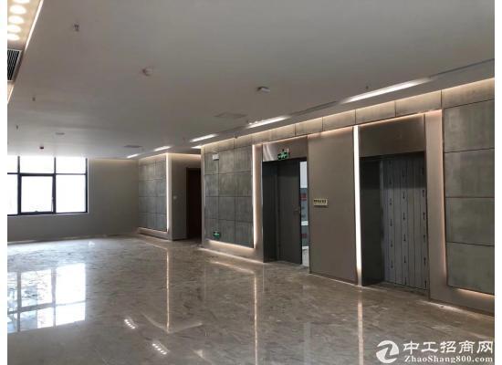 武汉经开永旺旁-临湖低密研发办公楼-园区有政策图片2