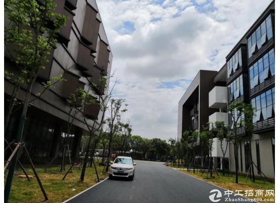 武汉经开永旺旁-临湖低密研发办公楼-园区有政策图片3