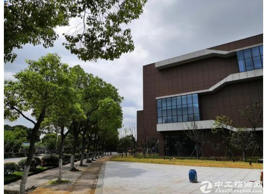 武汉经开永旺旁-临湖低密研发办公楼-园区有政策图片5