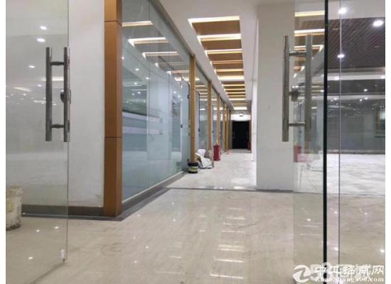 坂田杨美地铁口附近有面积1650平方米电商办公室出租
