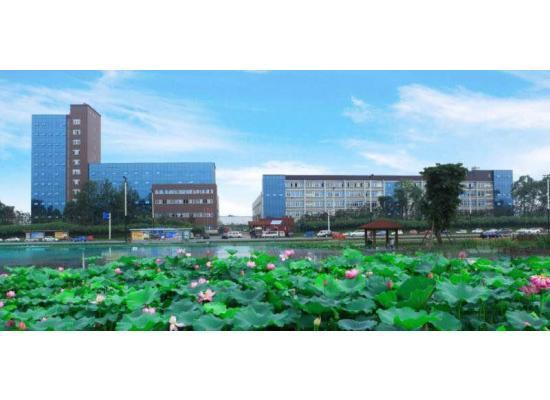 龙泉办公楼出租 100  150 600 1000 都有 大小可分图片1