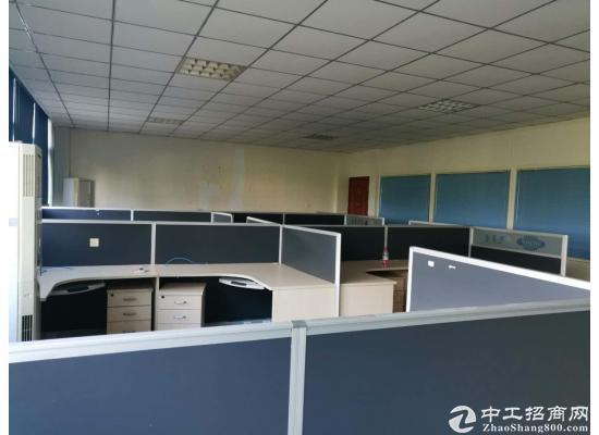 龙泉办公楼出租 100  150 600 1000 都有 大小可分图片3