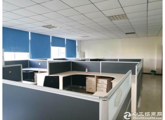 龙泉办公楼出租 100  150 600 1000 都有 大小可分图片4