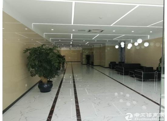星月总部湾300平户型方正办公装修租金实惠近地铁图片1
