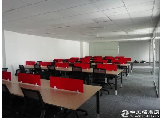 星月总部湾300平户型方正办公装修租金实惠近地铁图片3