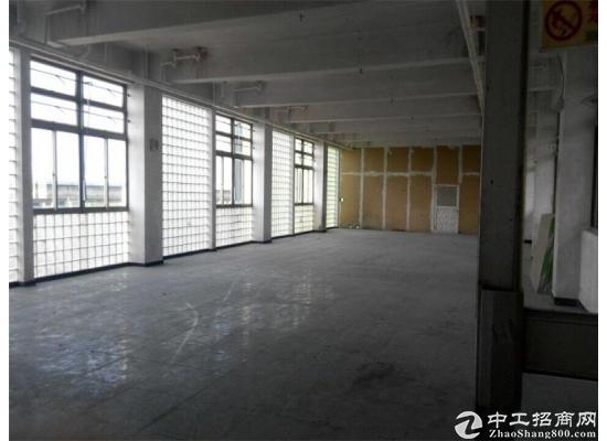 康桥精装办公室出租500平租金1.5元可注册园区招商部直租图片1