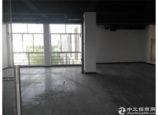 康桥精装办公室出租500平租金1.5元可注册园区招商部直租图片3