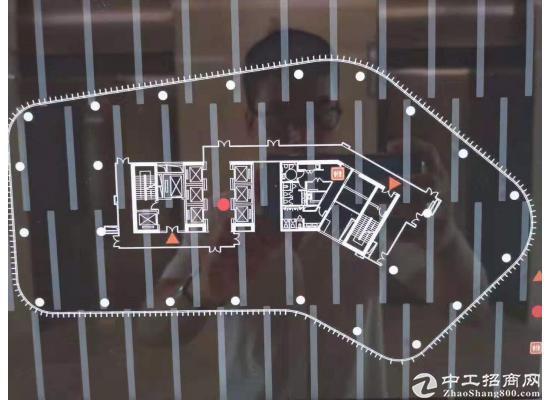 浦东外高桥森兰商圈6号线洲海路站整层可分割图片4