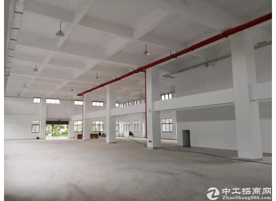张江医疗器械园104地块独门独院独幢4578平图片2