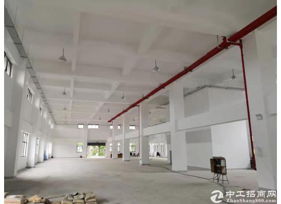 张江医疗器械园104地块独门独院独幢4578平图片1