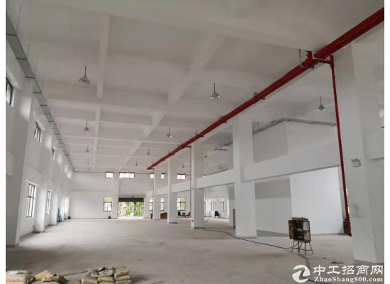 张江医疗器械园104地块独门独院独幢4578平图片3