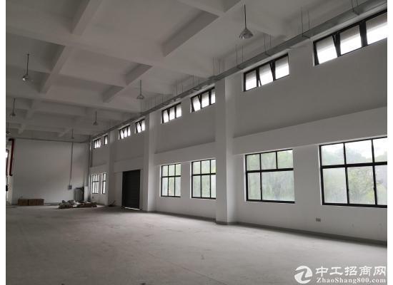张江医疗器械园104地块独门独院独幢4578平图片5