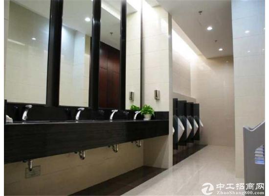 世纪公园 丁香国际大厦 540平方 带装修家具随时看图片5