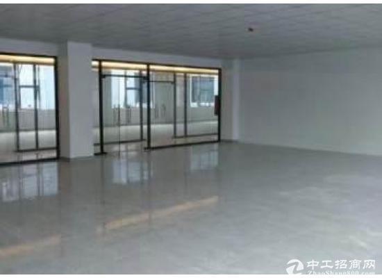横岗六约星展创意园B栋2--6楼55平一间,整层385平米招租