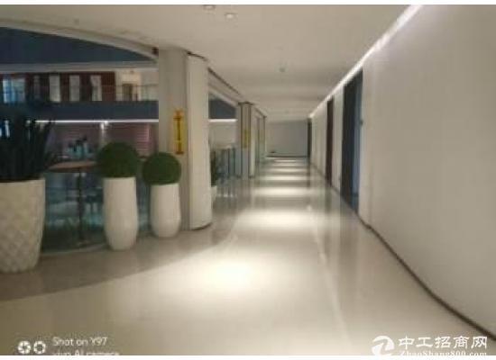 大岭山松山湖内全新高端写字楼出租(非中介)图片2
