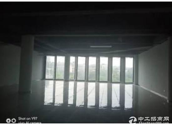 大岭山松山湖内全新高端写字楼出租(非中介)图片3
