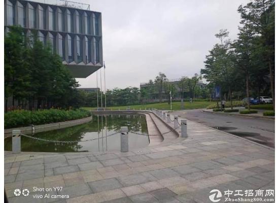 大岭山松山湖内全新高端写字楼出租(非中介)图片5