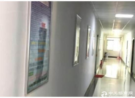 大岭山广场帝京酒店后面办公室低价转让150平方(非中介)图片4